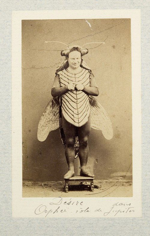 creepy-halloween-costumes-butterfly