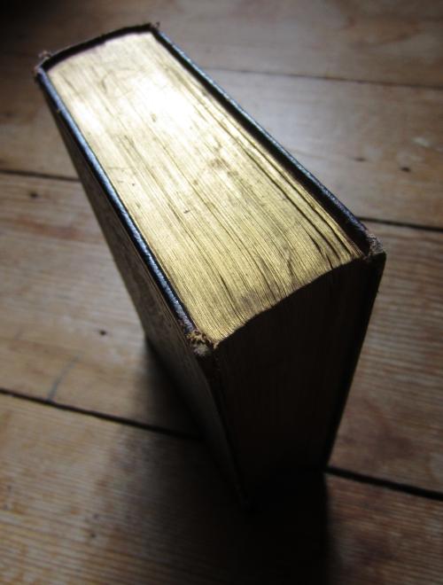 gilt edges shakespeare